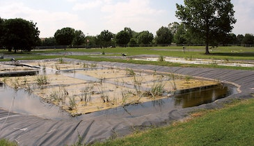 What Are Floating Wetlands and How Might They Serve the Wastewater Industry?