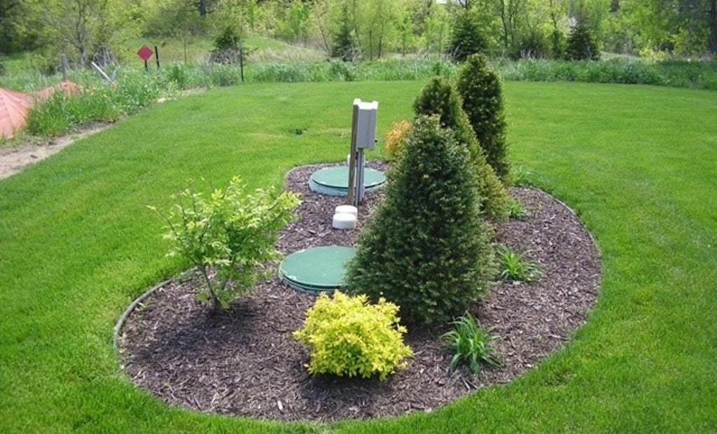 Landscaping Basics: Cover and Vegetation Over the Soil Treatment Area