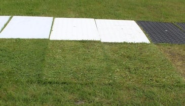 Clear Mats Provide Vehicle Access Without Depriving Landscaping Of Sun