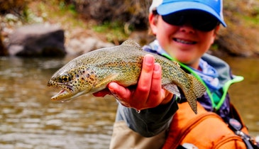 Tips and Tackle for Dirty Water Trout