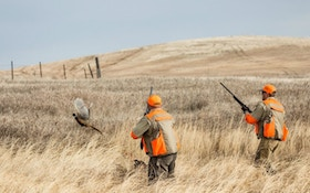 Outfitting Upland Bird Hunters