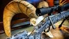 2020 New Hybrid Hunting Rifles