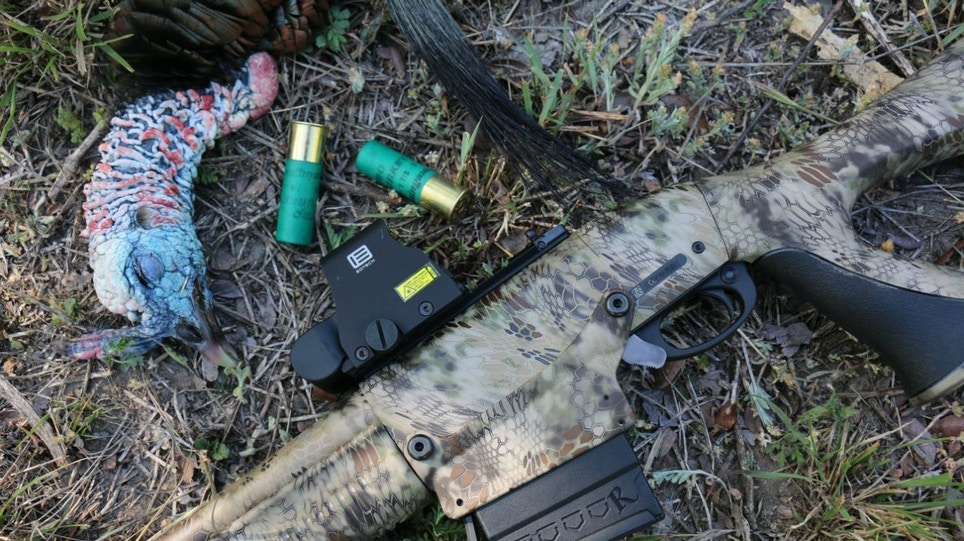 Essential Turkey Guns and Ammo