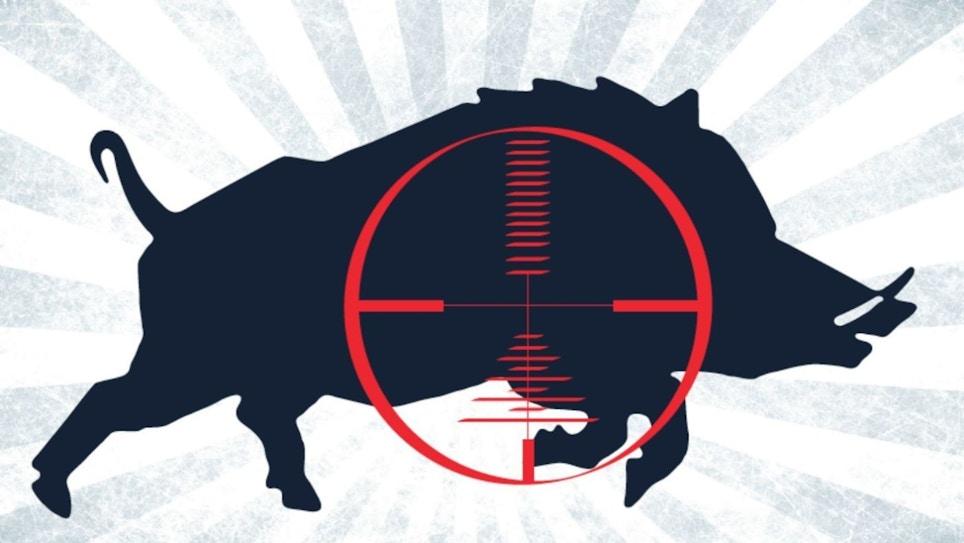 Great Gear for Nighttime Hog Hunting