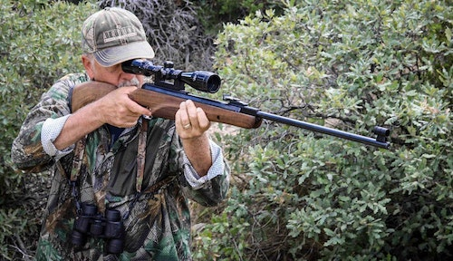 A conventional spring piston rifle can be an excellent choice for small game.