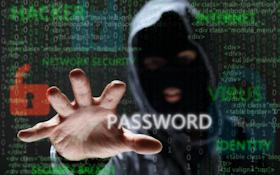 Website Security for Gun Shops