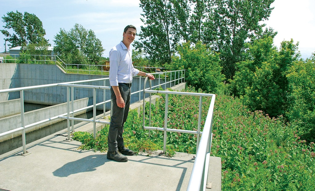 A Weed Patch in this Ontario City Turned Out to Be a Magnet for a Treasured Species