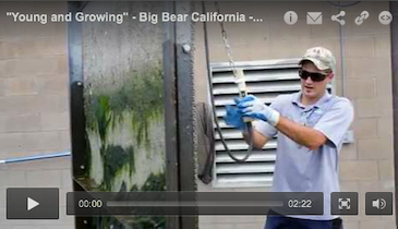 """Young and Growing"" - Big Bear California - April 2014 TPO Video Profile"