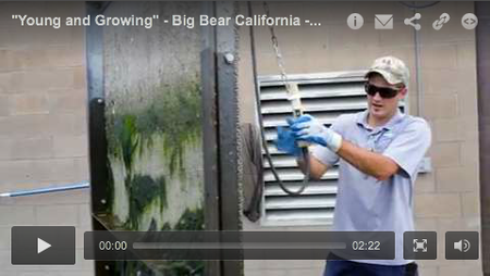 """Young and Growing"" - Big Bear California - April 2014 TPO Video Profile"