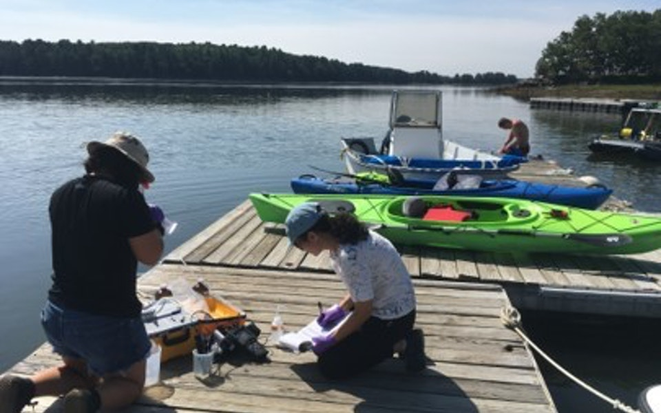 New England Researchers Find Only 10% of PFAS Passed Through WWTPs
