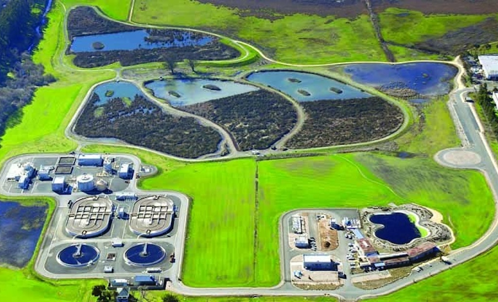 California's Mouse-Shaped Wetlands Cleans Effluent and Provides Habitat