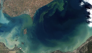 EPA Announces Resources to Address Nutrient Pollution Affecting Waters