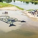 An Island Shaped Like a School Emblem Sends a Powerful Message of Environmental Stewardship