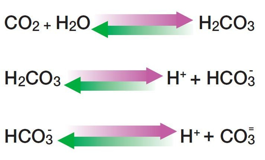 Advantages of Carbon Dioxide Replacing Acid to Reduce pH