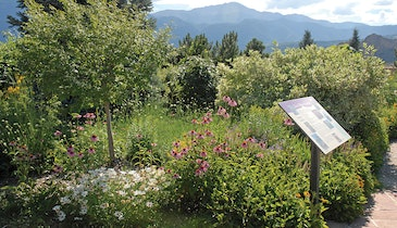 This utility proves the less water does not mean a less beautiful landscape