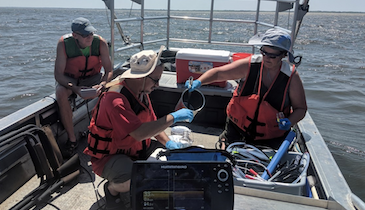EPA Launches Cyanobacteria Web Tool for Water Quality Monitoring
