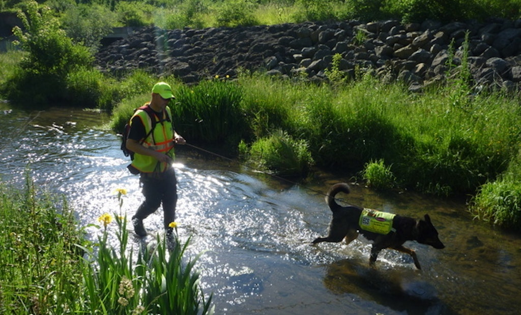 Leak Detectives: Dogs Sniff Out Failing Wastewater Systems