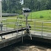 Drylet Microbe and Substrate Formulation Helps Slash Biosolids Volume