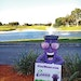 Squirt The Reuse Mascot Says, 'Use Reclaimed Water!'