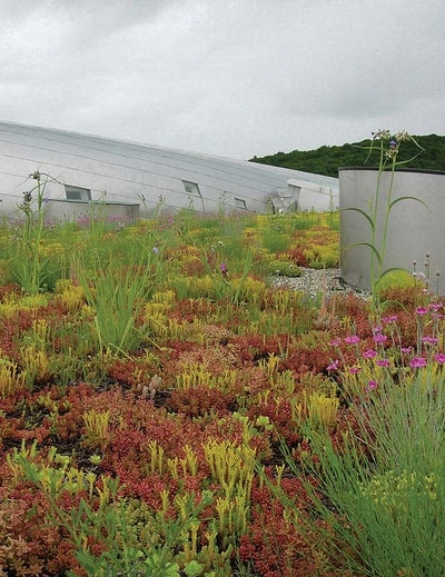 This Plant's Landscape Replicates the Stages of Water Treatment