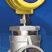 Biogas - FCI - Fluid Components International ST75 Series