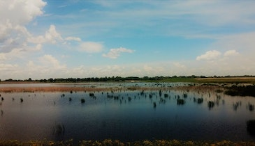 Florida DEP Invests $90 Million in Water Quality Projects