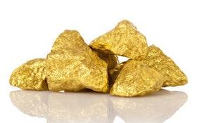 Gold Rush! Could Biosolids Contain Millions in Precious Metals?
