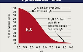 How to Prevent the Formation and Release of Hydrogen Sulfide