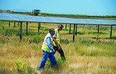 Unplugged: The Path to Becoming an Energy Independent Facility