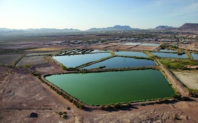 Treatment Plant Ponds Become A Haven For Wildlife And A Magnet For Visitors