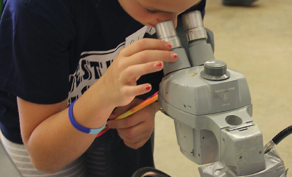 Iowa Children's Water Festival Teaches Fifth-Graders About Water at an Opportune Age