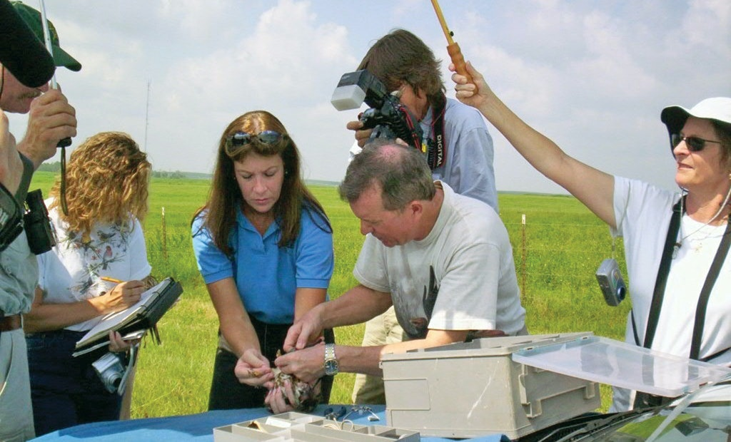 How a Florida Utility Combines Wastewater Treatment With Raptor Rehabilitation