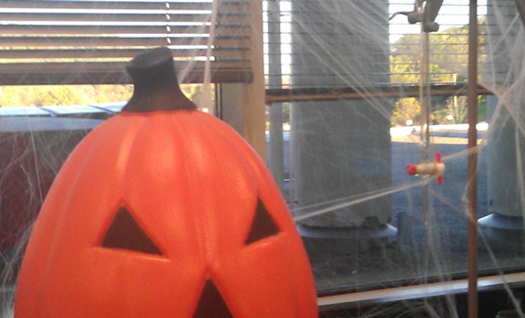 Trick or Treatment? Halloween-Themed Plant Tours Scream Fun