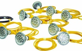 Larson Electronics LED light string