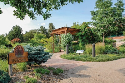 This Utility Proves That Less Water Does Not Mean a Less Beautiful Landscape