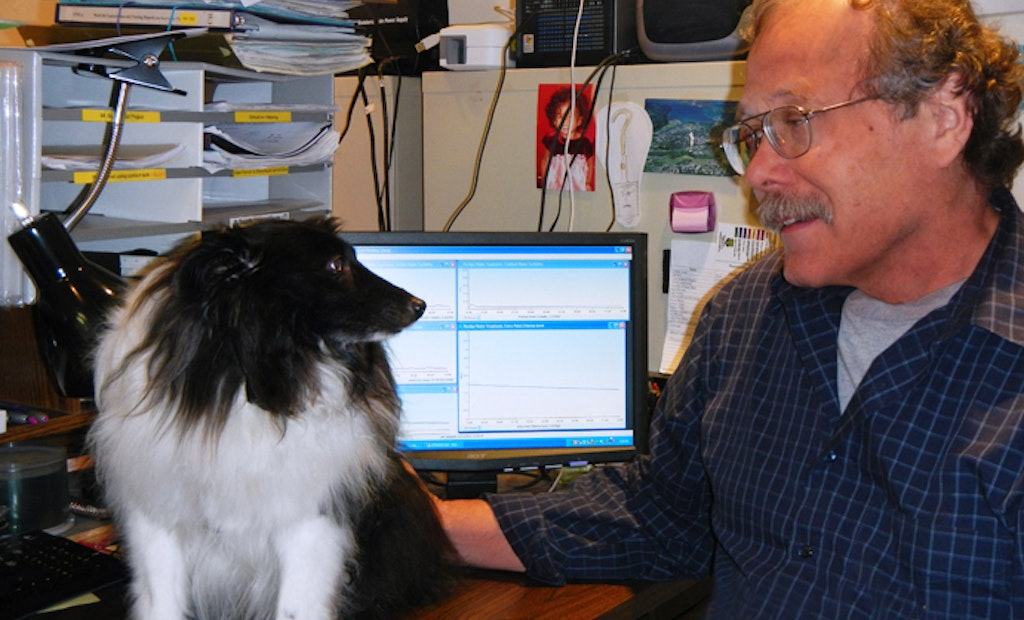 Loyal Sheltie helps water utility manager receive alarms