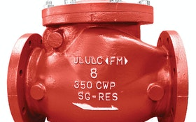 Mueller swing check valves