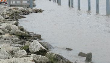 Rep. Reid Ribble Hopes to 'Save the Bay' Through Phosphorus Reduction