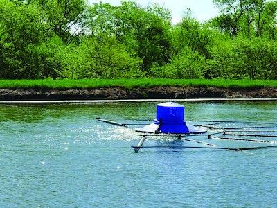 Biodredging Promises Affordable Alternative for Lagoon Maintenance