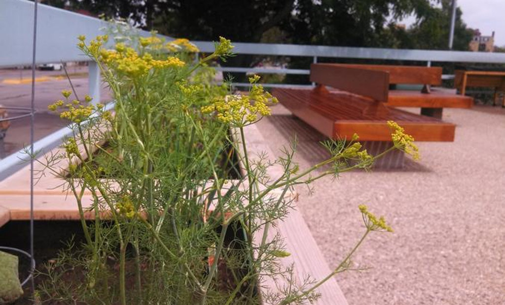 The Little Garden On Top of a Pump Station