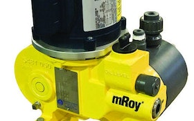 Hydraulically balanced diaphragm pump designed for long life