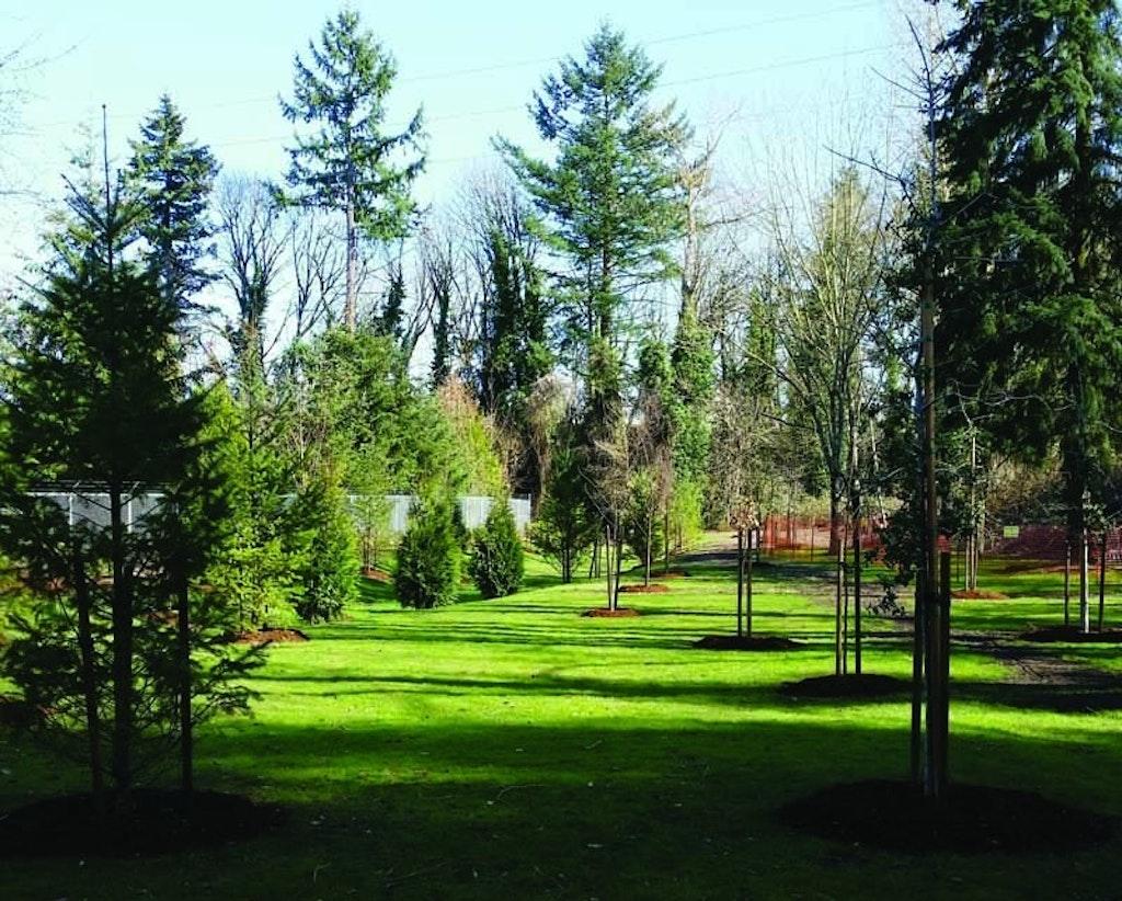 Flowering Shrubs Control Odor At Oregon Treatment Plant Operator