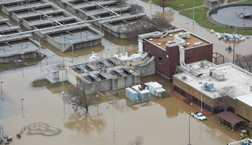 Picking Up the Pieces: St. Louis Plants Recover From Historic Flooding