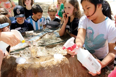 Turning Students Into Water Stewards