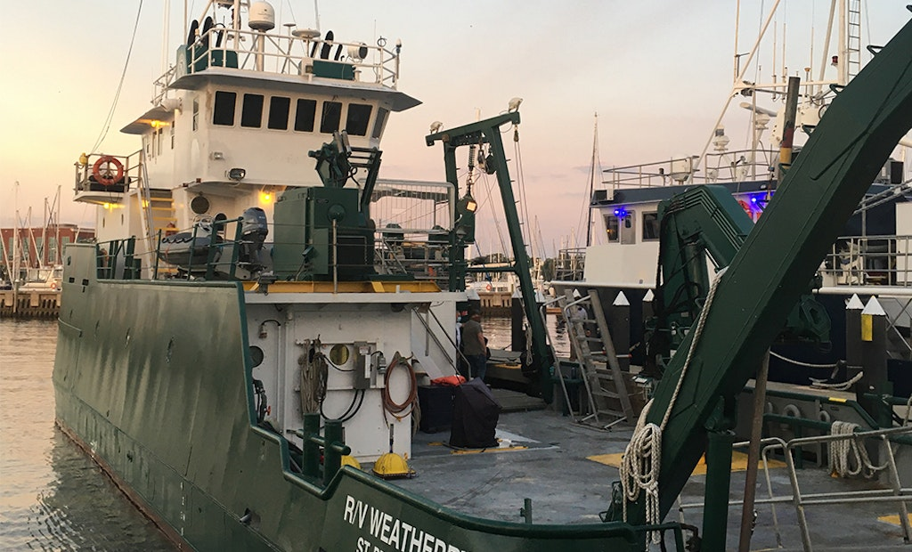 USF Leads Research Cruise to Study Piney Point's Environmental Impact