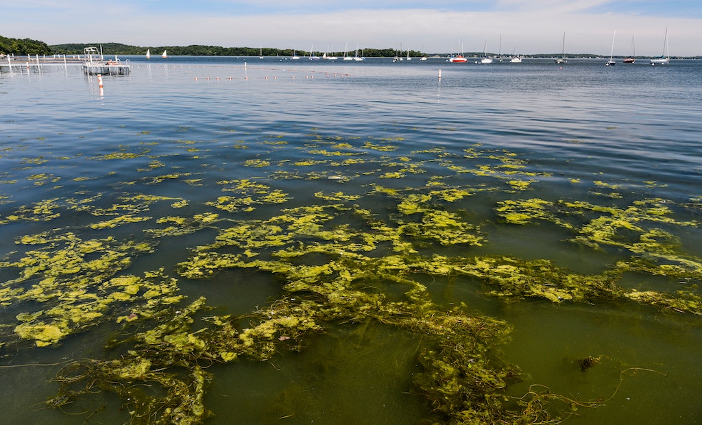 UW-Madison and Extension Collaborate on Wisconsin's Water Quality