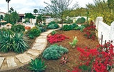 Water-Conserving Landscapes Don't Have to Be Limited to Desert-Tolerant Vegetation