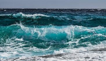 Teams Ride Wave of Winnings to Succeed in Water Desalination Challenge